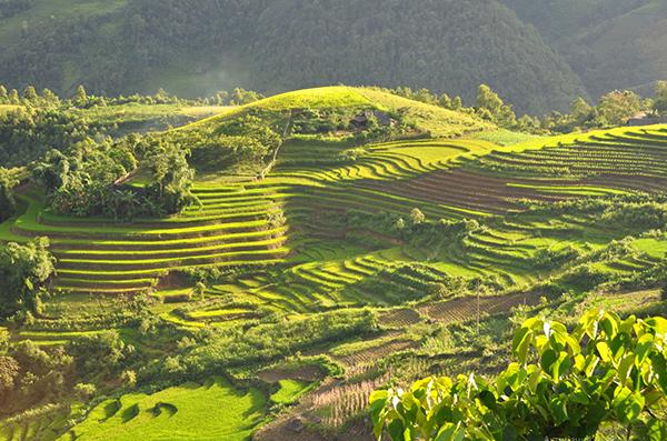 Курорты Вьетнама – куда лучше поехать?