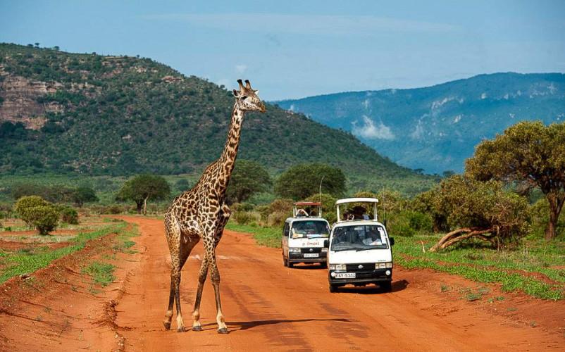 10 лучших туристических достопримечательностей Кении